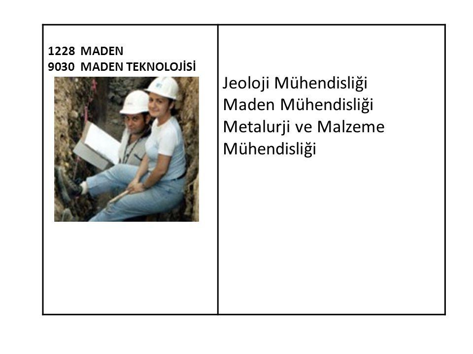 1228 MADEN 9030 MADEN TEKNOLOJİSİ Jeoloji Mühendisliği Maden Mühendisliği Metalurji ve Malzeme Mühendisliği