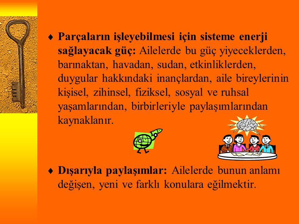  Parçaların işleyebilmesi için sisteme enerji sağlayacak güç: Ailelerde bu güç yiyeceklerden, barınaktan, havadan, sudan, etkinliklerden, duygular ha