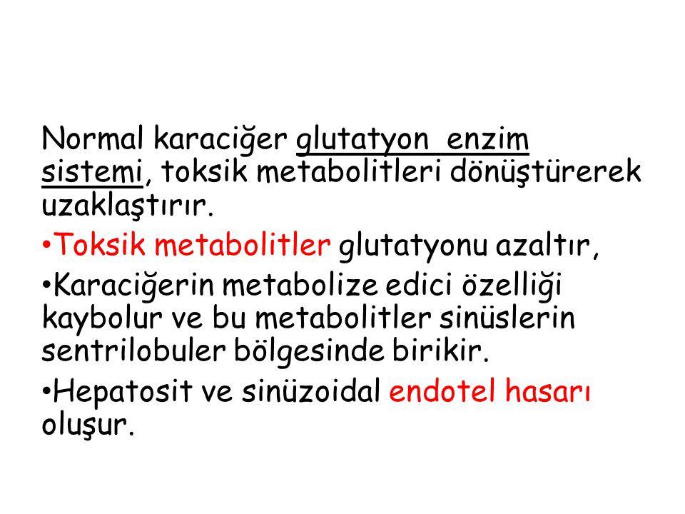 Normal karaciğer glutatyon enzim sistemi, toksik metabolitleri dönüştürerek uzaklaştırır. Toksik metabolitler glutatyonu azaltır, Karaciğerin metaboli