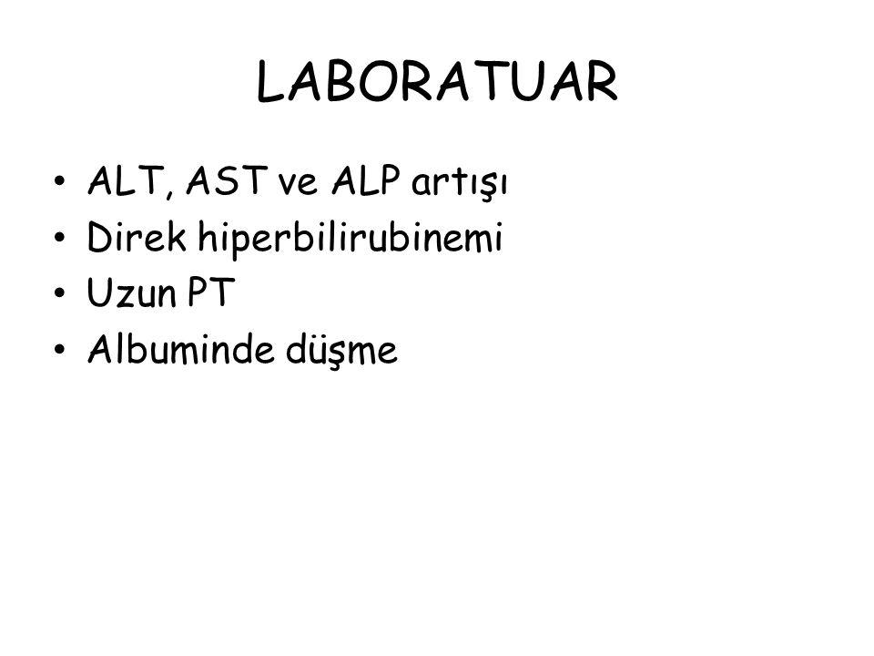 LABORATUAR ALT, AST ve ALP artışı Direk hiperbilirubinemi Uzun PT Albuminde düşme