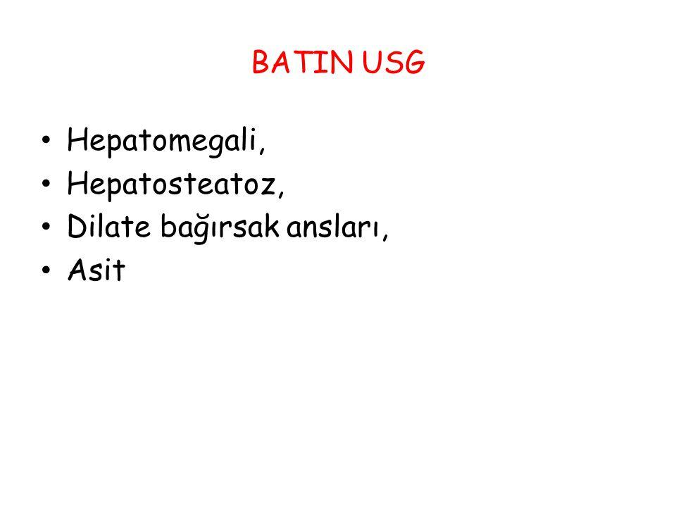 BATIN USG Hepatomegali, Hepatosteatoz, Dilate bağırsak ansları, Asit