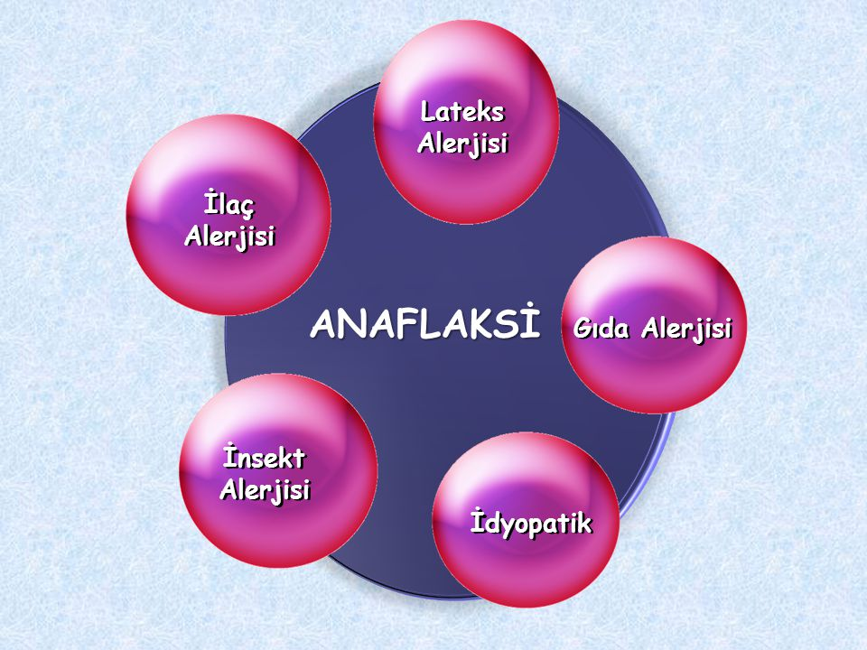 Lateks Alerjisi İdyopatik İlaç Alerjisi İnsekt Alerjisi ANAFLAKSİ Gıda Alerjisi