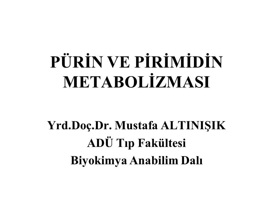 PÜRİN VE PİRİMİDİN METABOLİZMASI Yrd.Doç.Dr. Mustafa ALTINIŞIK ADÜ Tıp Fakültesi Biyokimya Anabilim Dalı