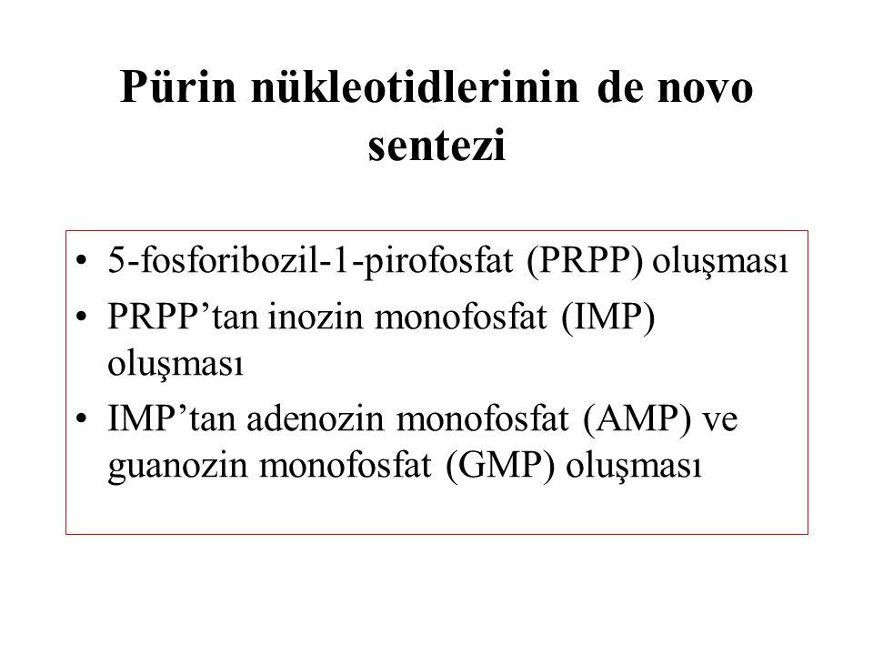 Pürin nükleotidlerinin de novo sentezi 5-fosforibozil-1-pirofosfat (PRPP) oluşması PRPP'tan inozin monofosfat (IMP) oluşması IMP'tan adenozin monofosf
