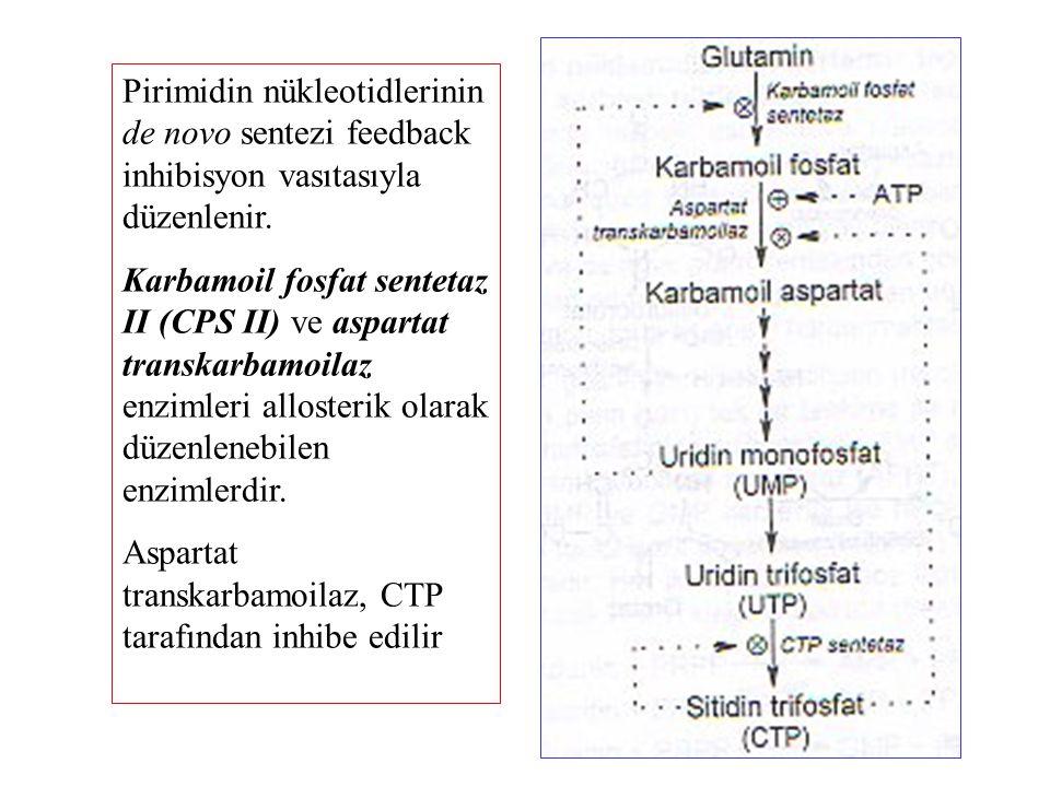 Pirimidin nükleotidlerinin de novo sentezi feedback inhibisyon vasıtasıyla düzenlenir. Karbamoil fosfat sentetaz II (CPS II) ve aspartat transkarbamoi
