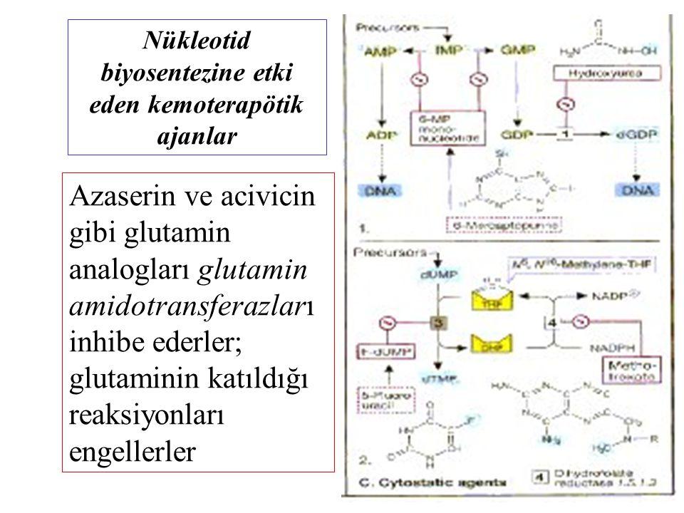 Azaserin ve acivicin gibi glutamin analogları glutamin amidotransferazları inhibe ederler; glutaminin katıldığı reaksiyonları engellerler Nükleotid bi