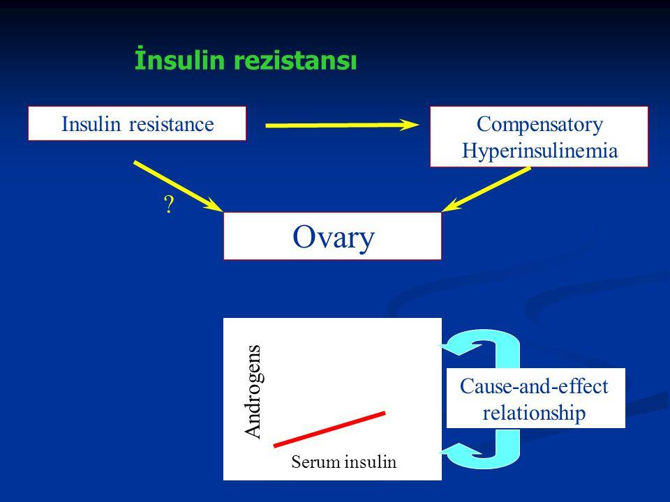 LH and IGF-I effect on theca cells Cytochrome p-450c 17-alpha activity Androgen secretion Non-obese Obese IGFBP-I IGF-I Insulin resistance Hyperinsulinemia SHBG LH PKOSPKOS