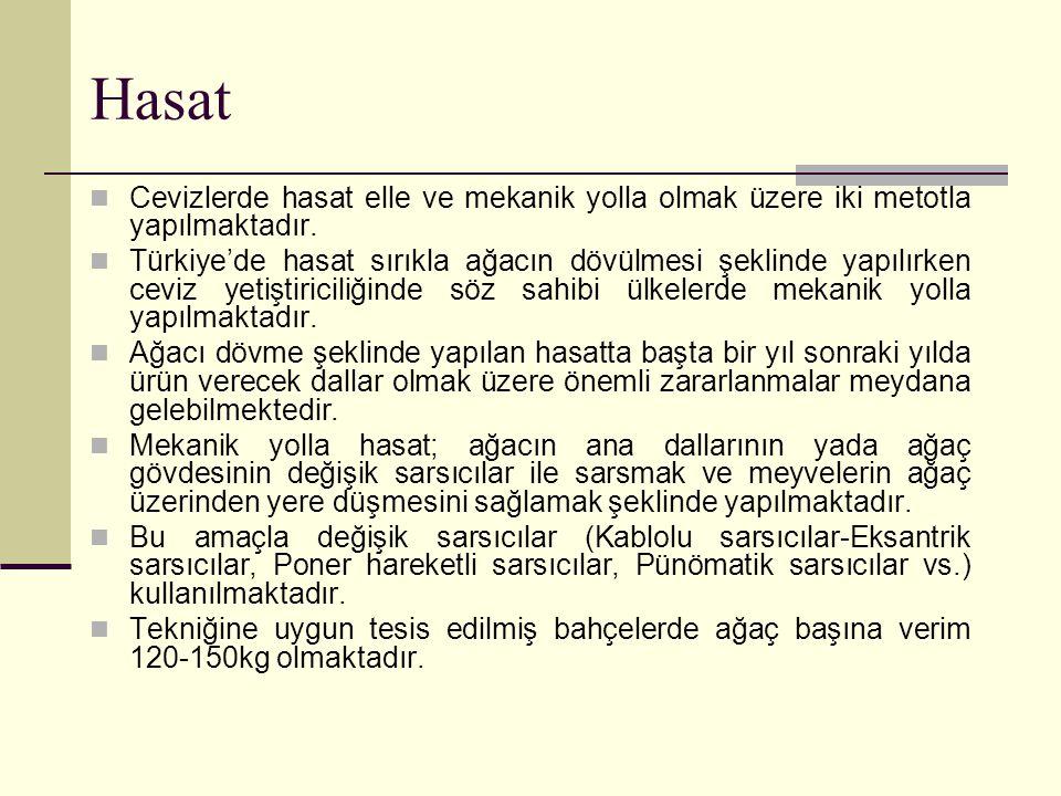Hasat Cevizlerde hasat elle ve mekanik yolla olmak üzere iki metotla yapılmaktadır. Türkiye'de hasat sırıkla ağacın dövülmesi şeklinde yapılırken cevi