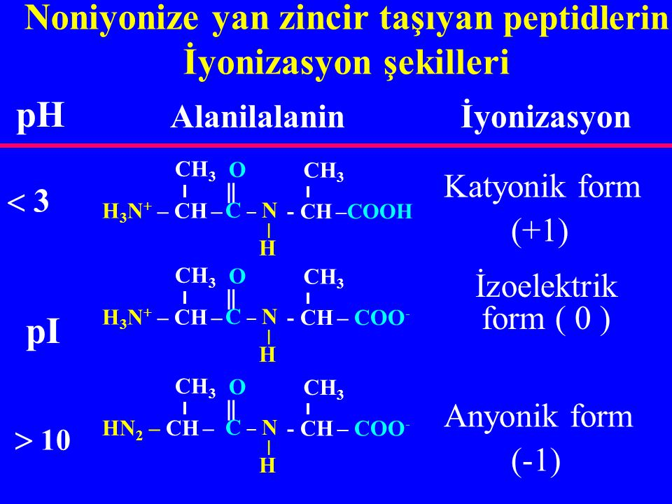 N-terminal + NH 3 grupları, türedikleri amino asidin amino grubuna göre, daha güçlü asittir (pK  ) Peptidlerde N- ve C-terminal gruplar, aynı  -karbon atomu üzerinde bulunmadıkları için: C-terminal COO - grupları, türedikleri amino asidin karboksil grubuna göre, daha zayıf asittir (pK  )