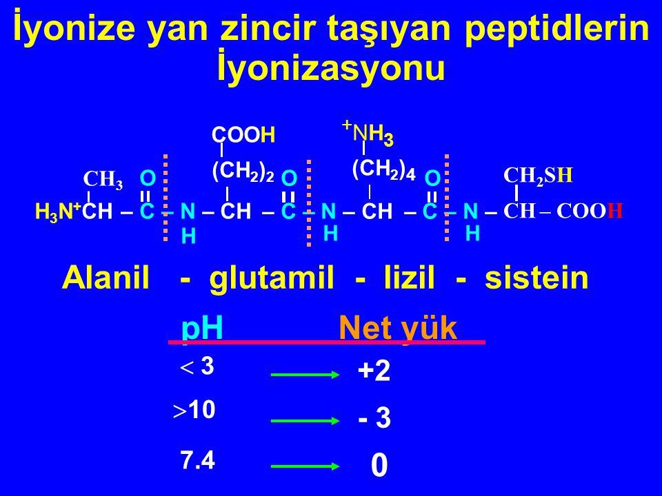 Anyonik form (-1)  10 İzoelektrik form ( 0 ) pI Katyonik form (+1)  3 3 İyonizasyonAlanilalanin pH H 3 N + – CH – CH 3 - CH –COOH CH 3 O ‖ C _ N  H H 3 N + – CH – CH 3 - CH – COO - CH 3 O ‖ C _ N  H HN 2 – CH – CH 3 - CH – COO - CH 3 O ‖ C _ N  H Noniyonize yan zincir taşıyan peptidlerin İyonizasyon şekilleri