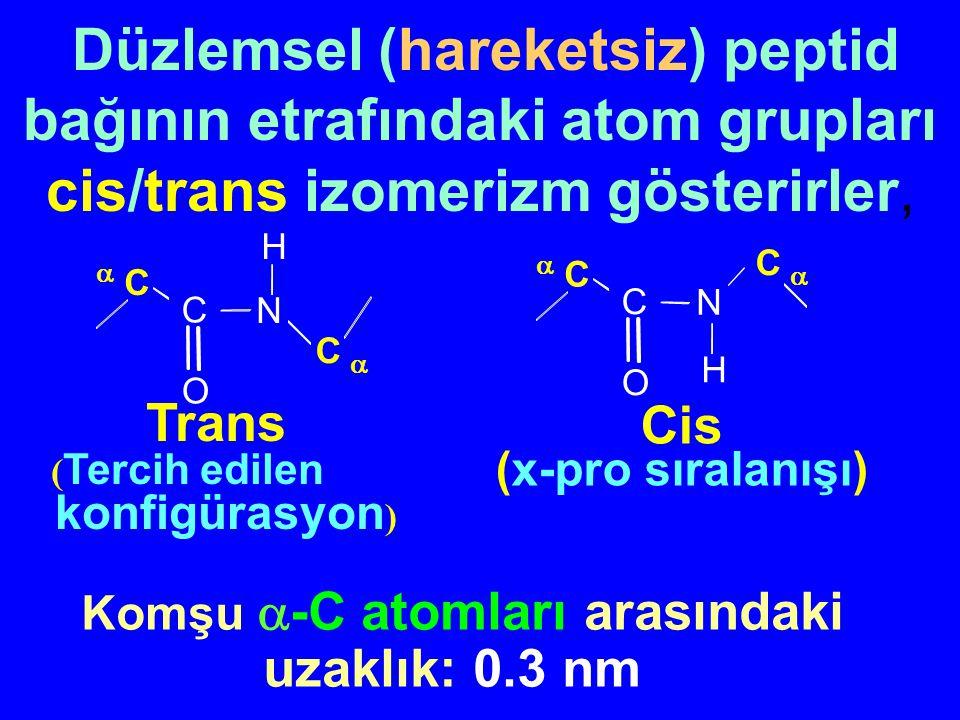 Peptid bağının düzlemsel karakteri Peptid bağının kısmi çift bağ karakteri Bağ açıları ve uzunluklar