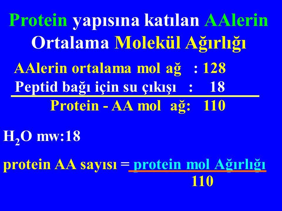 Protein Molekül Ağ AA sayısı Zincir sayısı İnsülin5700512 Miyoglobin16 8901531 Albümin66 0005501 glutamat dehidrojenaz (GDH) 1 000 000 830040 Bazı Protein Yapıları