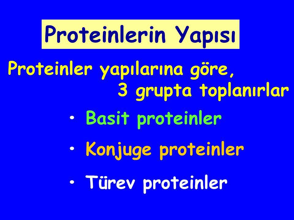Proteolitik enzimlere karşı dirençlidir Kollajen:Birbirine sarılmış 3 polipeptid zinciri (üçlü heliks)'nden oluşur Memelilerde total proteinin %30'unu teşkil eder Gly,Ala,Pro,Lys'den zengindir A B C