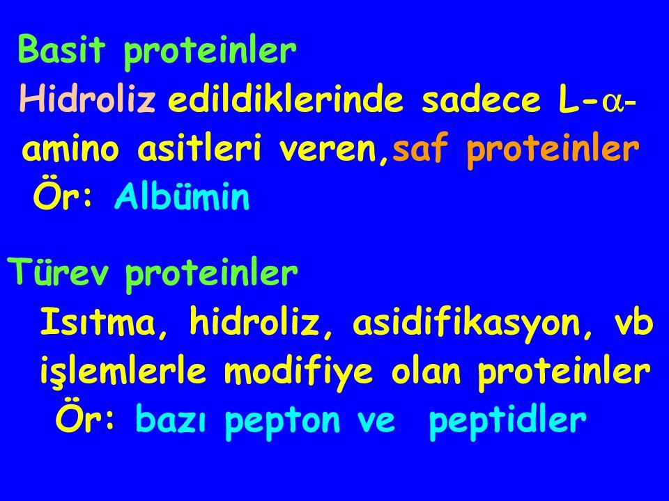 Proteinler yapılarına göre, 3 grupta toplanırlar Basit proteinler Konjuge proteinler Türev proteinler Proteinlerin Yapısı