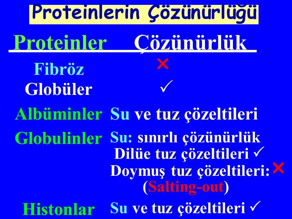 Hemoproteinler:protein+hem (ferroporfirin) Ör:hemoglobin,miyoglobin,katalaz Metalloproteinler: protein + metal Cu- seruloplazmin Fe-transferrin, ferritin Ca-kalmodulin Zn-karbonik anhidraz Konjuge proteinler