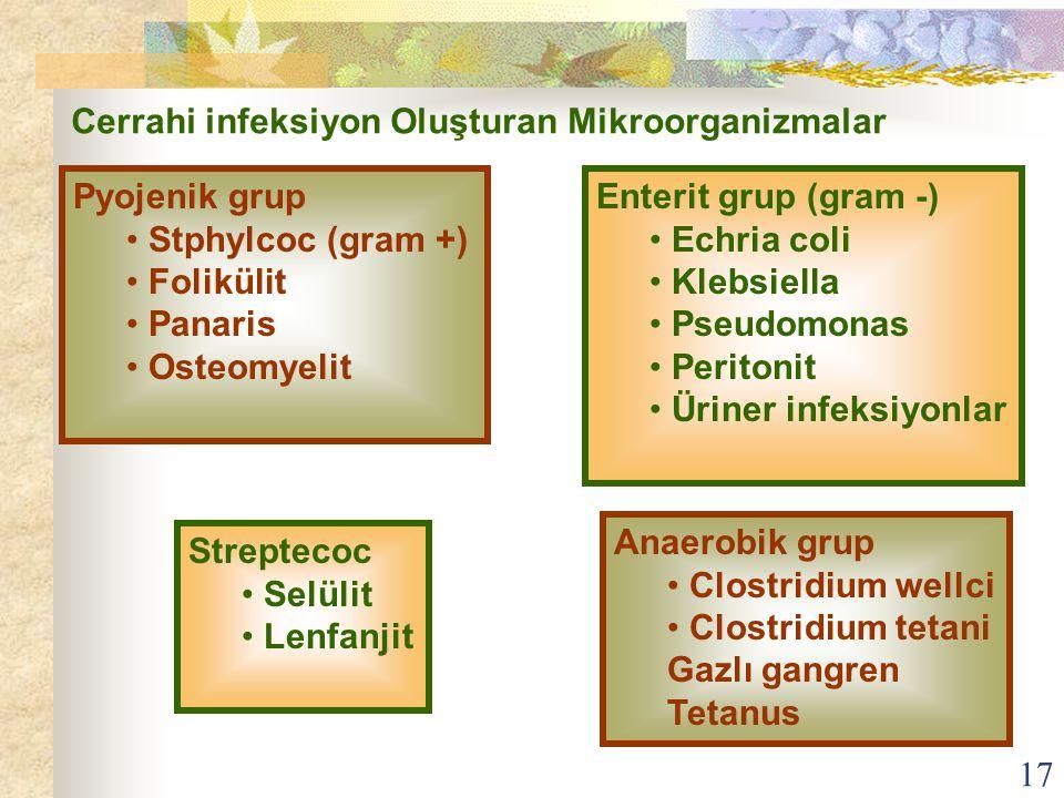 17 Cerrahi infeksiyon Oluşturan Mikroorganizmalar Pyojenik grup Stphylcoc (gram +) Folikülit Panaris Osteomyelit Enterit grup (gram -) Echria coli Kle
