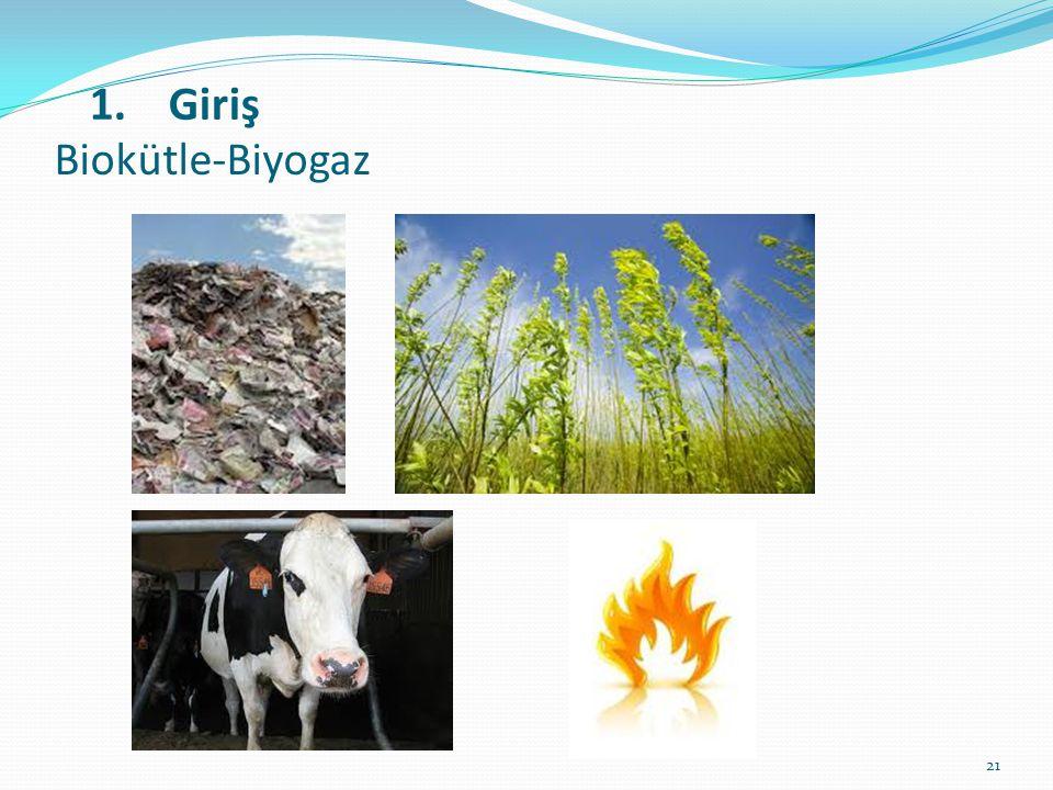 21 Biokütle-Biyogaz 1.Giriş