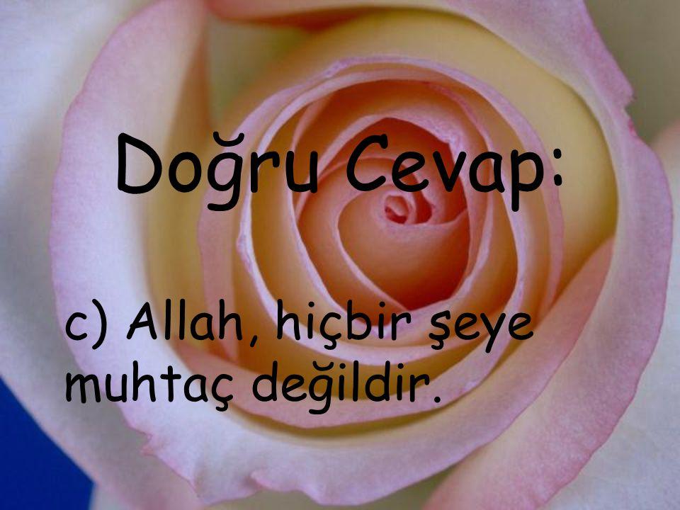 Doğru Cevap: c) Allah, hiçbir şeye muhtaç değildir.