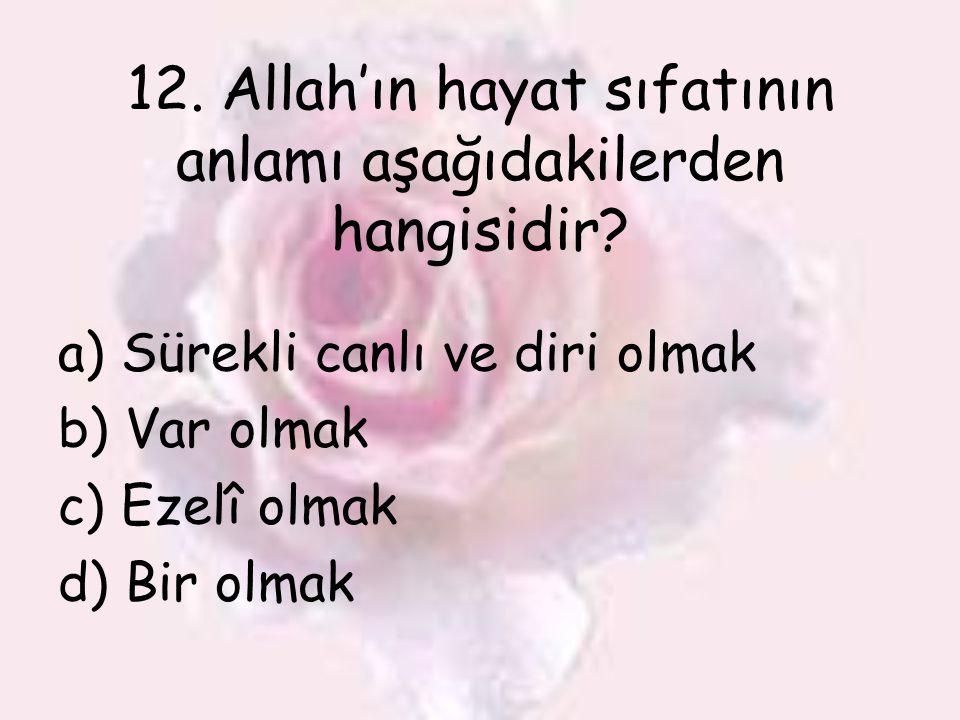 12. Allah'ın hayat sıfatının anlamı aşağıdakilerden hangisidir? a) Sürekli canlı ve diri olmak b) Var olmak c) Ezelî olmak d) Bir olmak