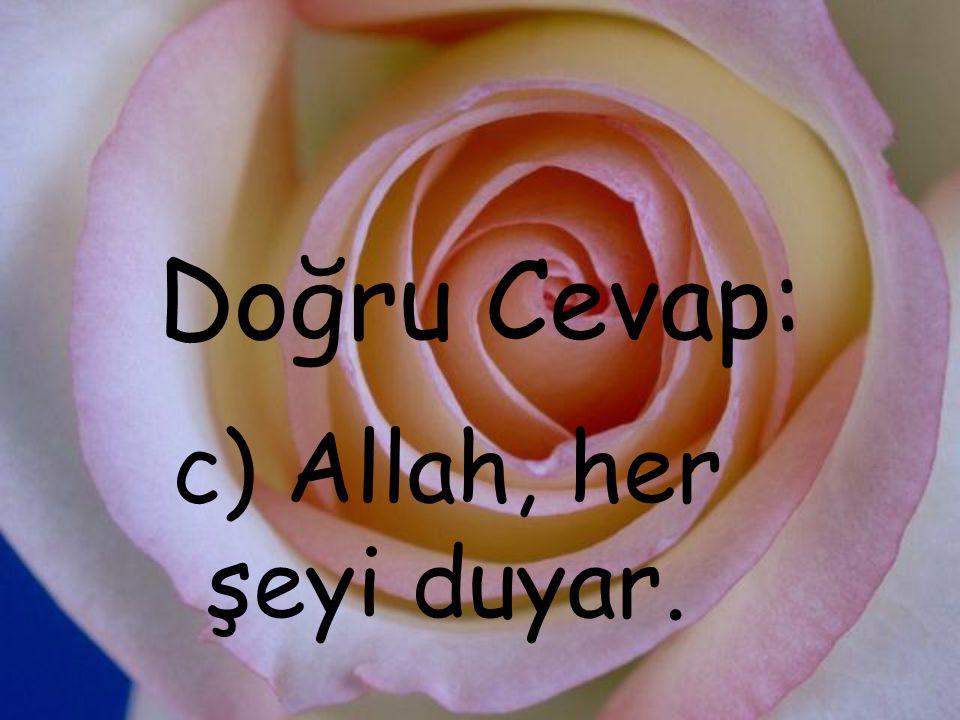 4.Aşağıdakilerden hangisi Kur'ân-ı Kerîm'deki cümlelere verilen isimdir.