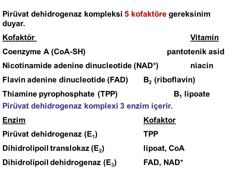 Pirüvat dehidrogenaz kompleksi 5 kofaktöre gereksinim duyar. Kofaktör Vitamin Coenzyme A (CoA-SH) pantotenik asid Nicotinamide adenine dinucleotide (N