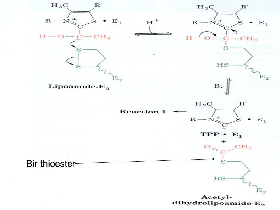 Bir thioester