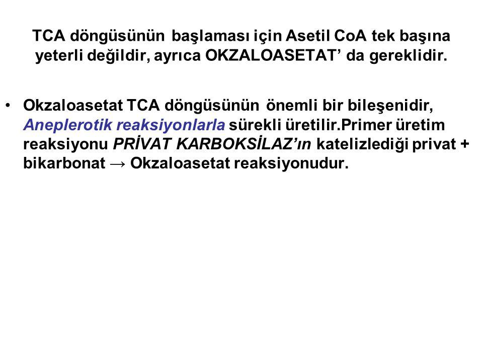 TCA döngüsünün başlaması için Asetil CoA tek başına yeterli değildir, ayrıca OKZALOASETAT' da gereklidir. Okzaloasetat TCA döngüsünün önemli bir bileş