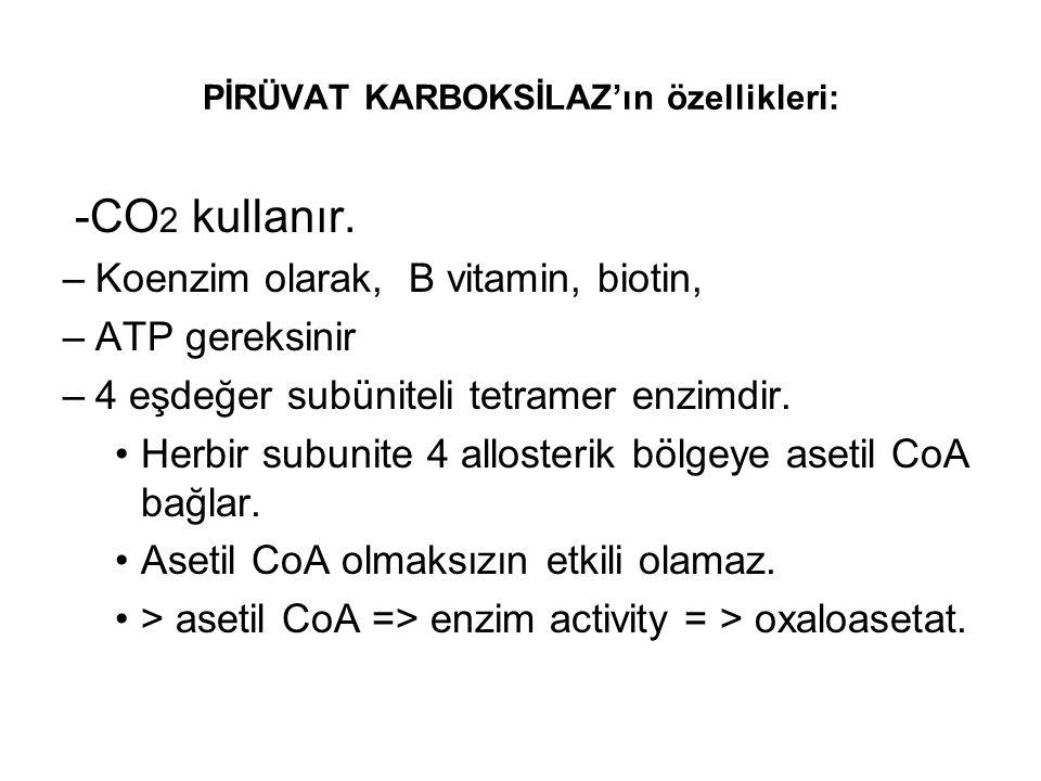 PİRÜVAT KARBOKSİLAZ'ın özellikleri: -CO 2 kullanır. –Koenzim olarak, B vitamin, biotin, –ATP gereksinir –4 eşdeğer subüniteli tetramer enzimdir. Herbi