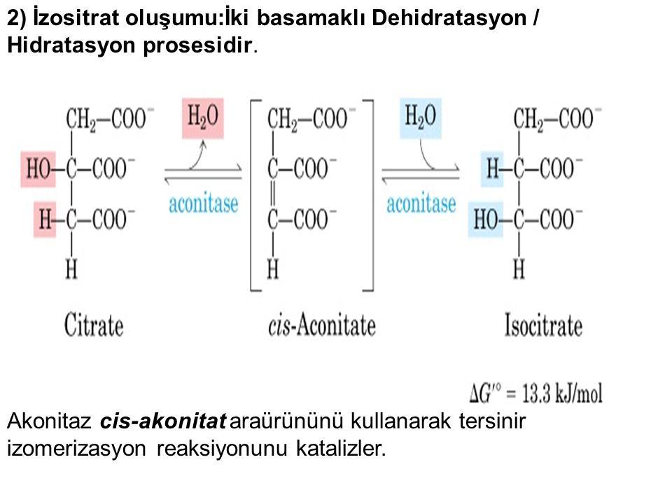 2) İzositrat oluşumu:İki basamaklı Dehidratasyon / Hidratasyon prosesidir. Akonitaz cis-akonitat araürününü kullanarak tersinir izomerizasyon reaksiyo