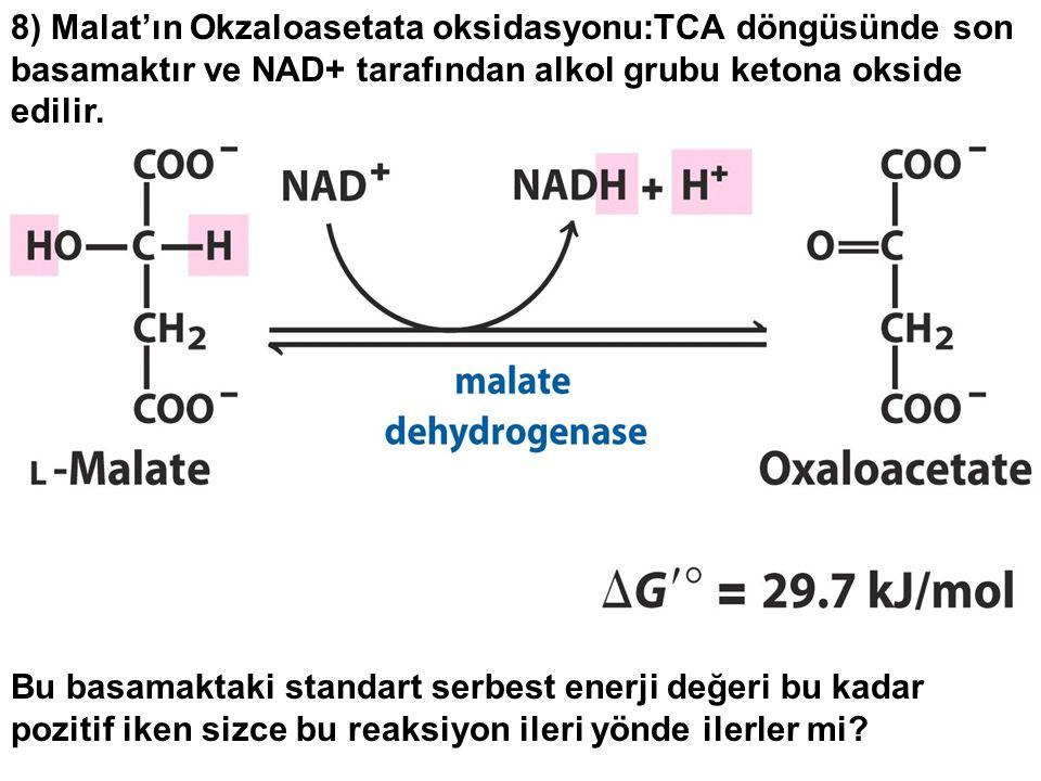 8) Malat'ın Okzaloasetata oksidasyonu:TCA döngüsünde son basamaktır ve NAD+ tarafından alkol grubu ketona okside edilir. Bu basamaktaki standart serbe