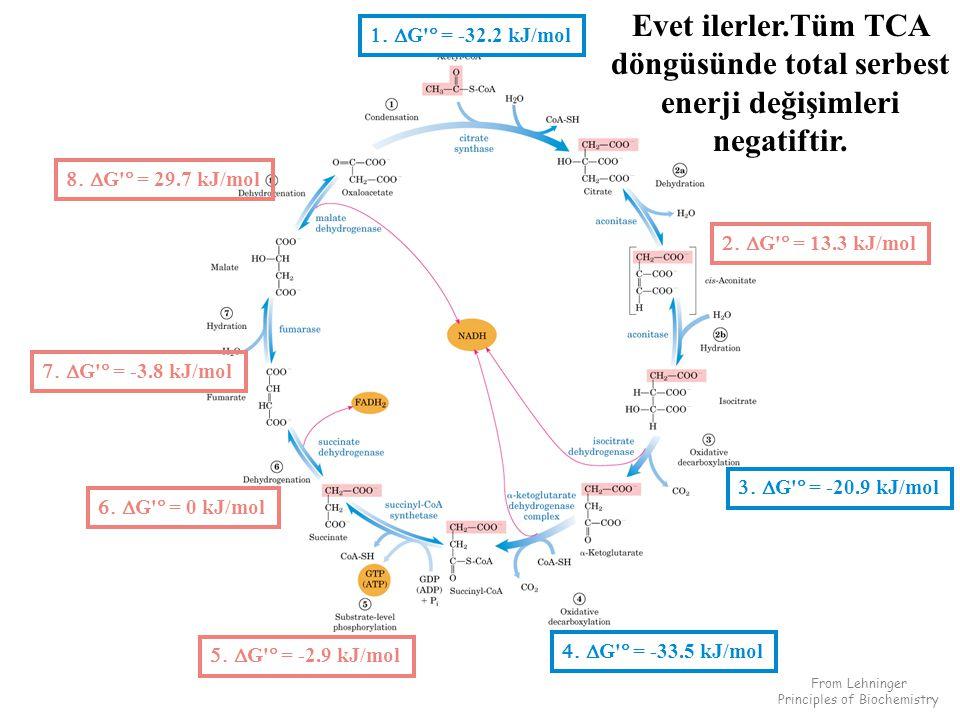  G  = -32.2 kJ/mol  G  = 13.3 kJ/mol  G  = -20.9 kJ/mol  G  = -33.5 kJ/mol  G  = -2.9 kJ/mol  G  = 29.7 kJ/mol  G  = 0 kJ/mol  G  = -3.8 kJ/mol From Lehninger Principles of Biochemistry Evet ilerler.Tüm TCA döngüsünde total serbest enerji değişimleri negatiftir.