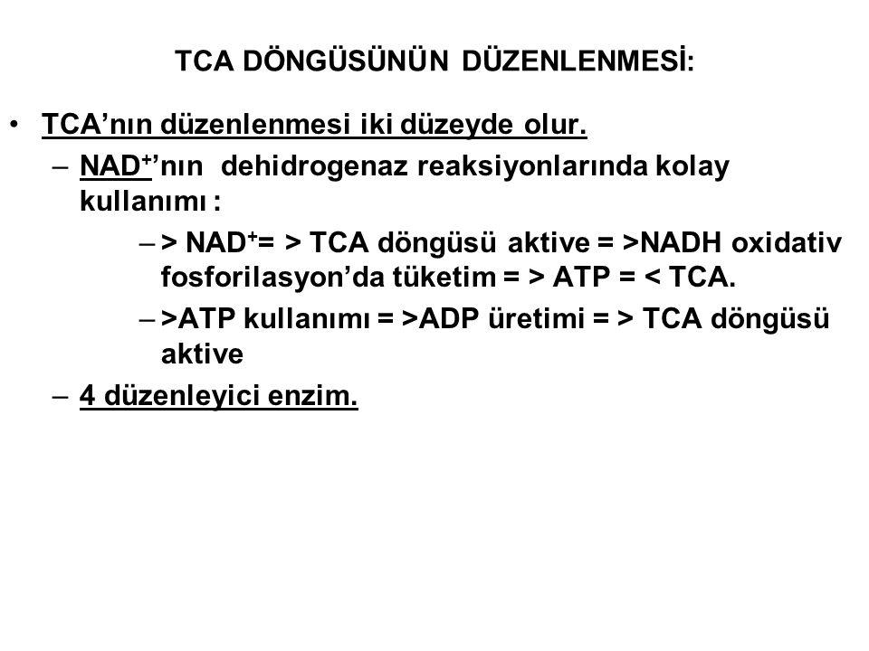 TCA DÖNGÜSÜNÜN DÜZENLENMESİ: TCA'nın düzenlenmesi iki düzeyde olur. –NAD + 'nın dehidrogenaz reaksiyonlarında kolay kullanımı : –> NAD + = > TCA döngü
