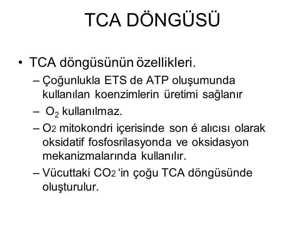 TCA DÖNGÜSÜ TCA döngüsünün özellikleri. –Çoğunlukla ETS de ATP oluşumunda kullanılan koenzimlerin üretimi sağlanır – O 2 kullanılmaz. –O 2 mitokondri
