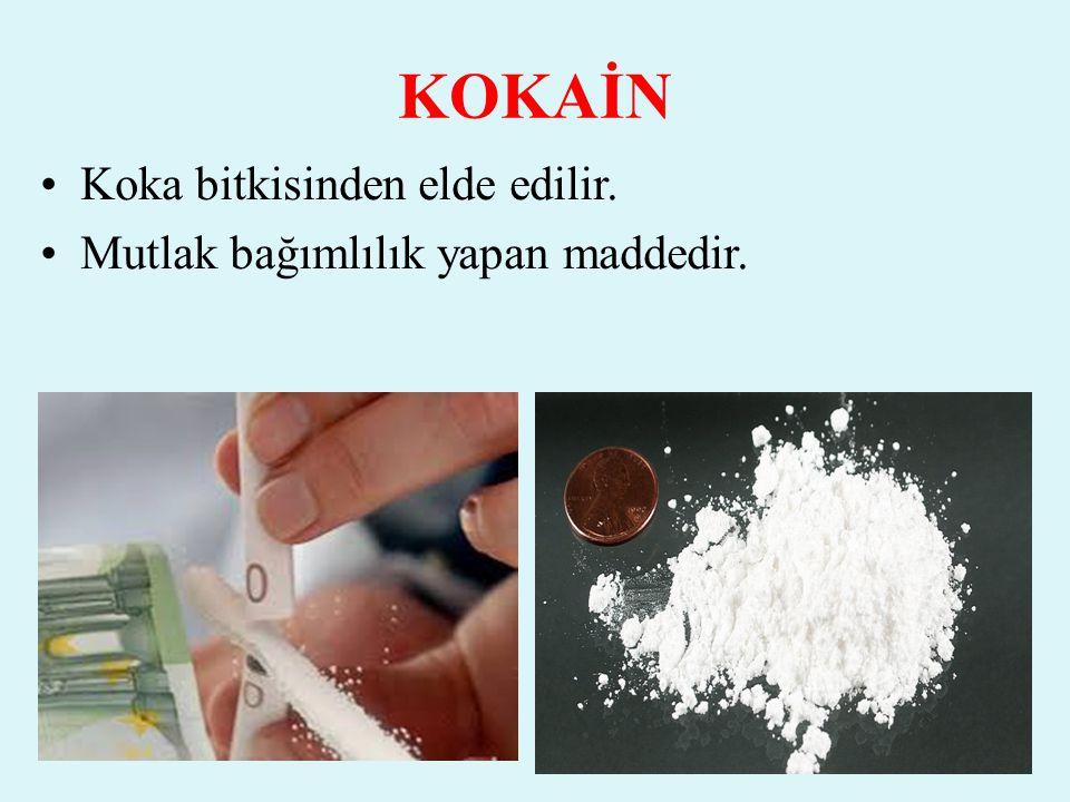 KOKAİN Koka bitkisinden elde edilir. Mutlak bağımlılık yapan maddedir.