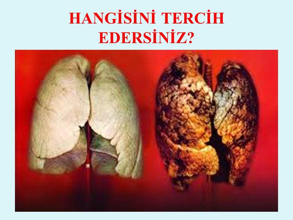 Akciğer, solunum yolları, dil ve gırtlak kanserine, Bronşit, kalp ve damar hastalıklarına, Beyin hücrelerinin ölümüne, öğrenme bozukluklarına ve hafıza zayıflığına, Damar sertliğine, beyin ve kalpte damar tıkanıklığına, kalp krizi ve tansiyon yükselmesine, Gastrit, ülser ve reflü hastalığına, Vücutta yorgunluk, uykusuzluk hali, stres, gerilime neden olur.