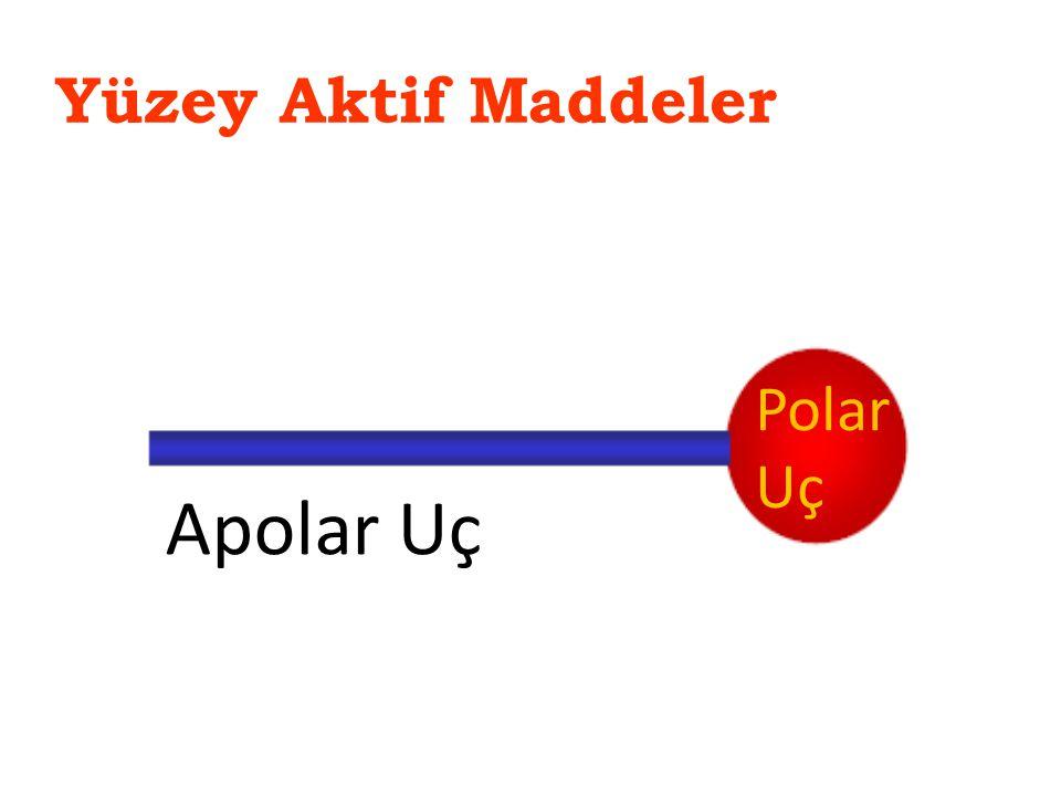 Yüzey Aktif Maddeler Apolar Uç Polar Uç