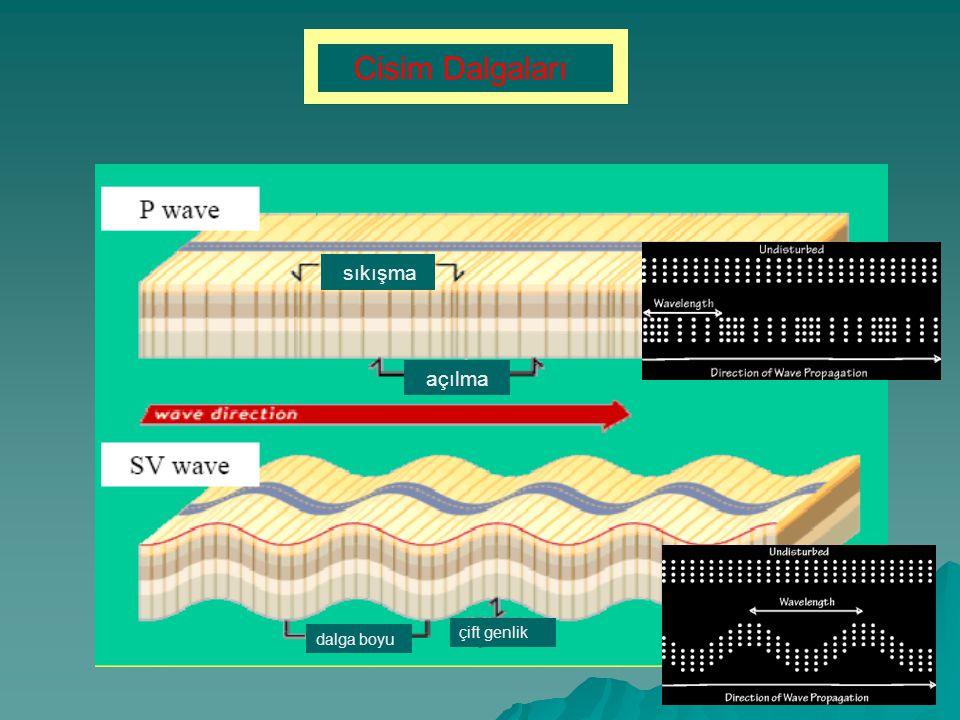 sıkışma açılma dalga boyu çift genlik Cisim Dalgaları