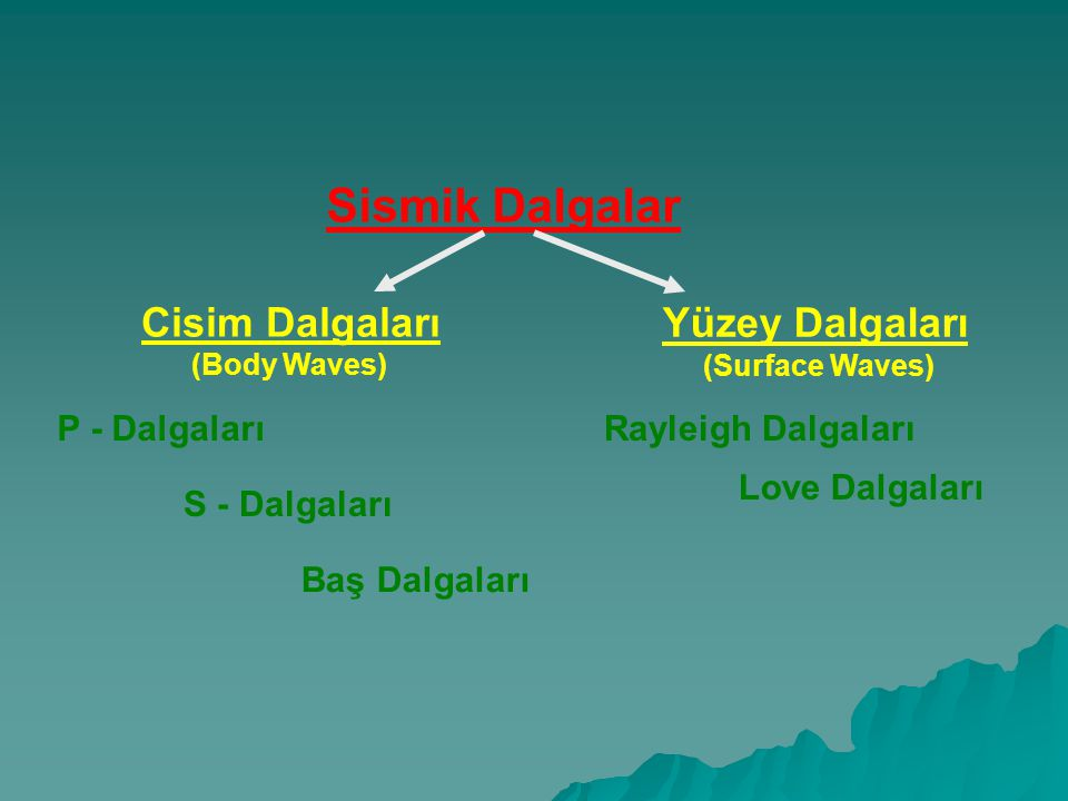 Sismik Dalgalar Cisim Dalgaları (Body Waves) Yüzey Dalgaları (Surface Waves) Rayleigh Dalgaları Love Dalgaları P - Dalgaları S - Dalgaları Baş Dalgaları