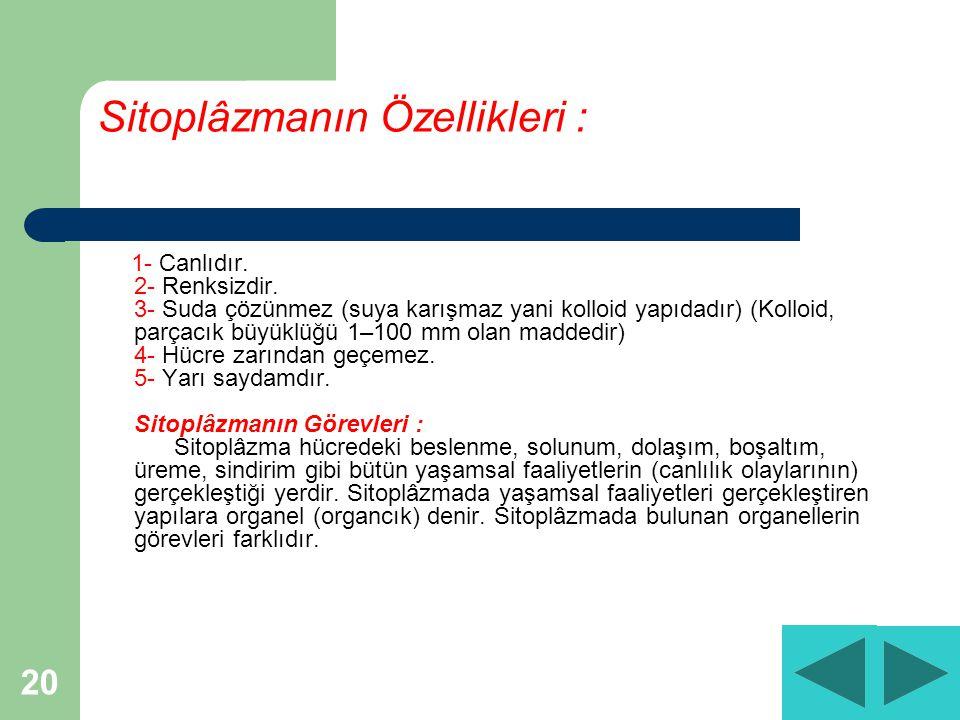 20 Sitoplâzmanın Özellikleri : 1- Canlıdır.2- Renksizdir.