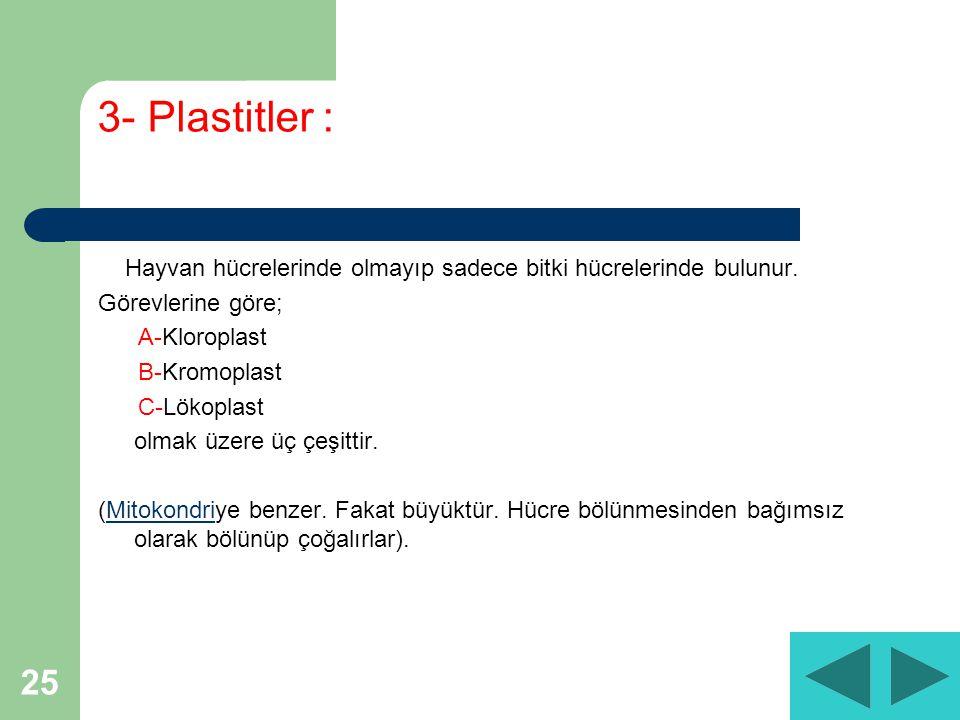 25 3- Plastitler : Hayvan hücrelerinde olmayıp sadece bitki hücrelerinde bulunur.