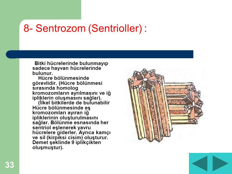 33 8- Sentrozom (Sentrioller) : Bitki hücrelerinde bulunmayıp sadece hayvan hücrelerinde bulunur.