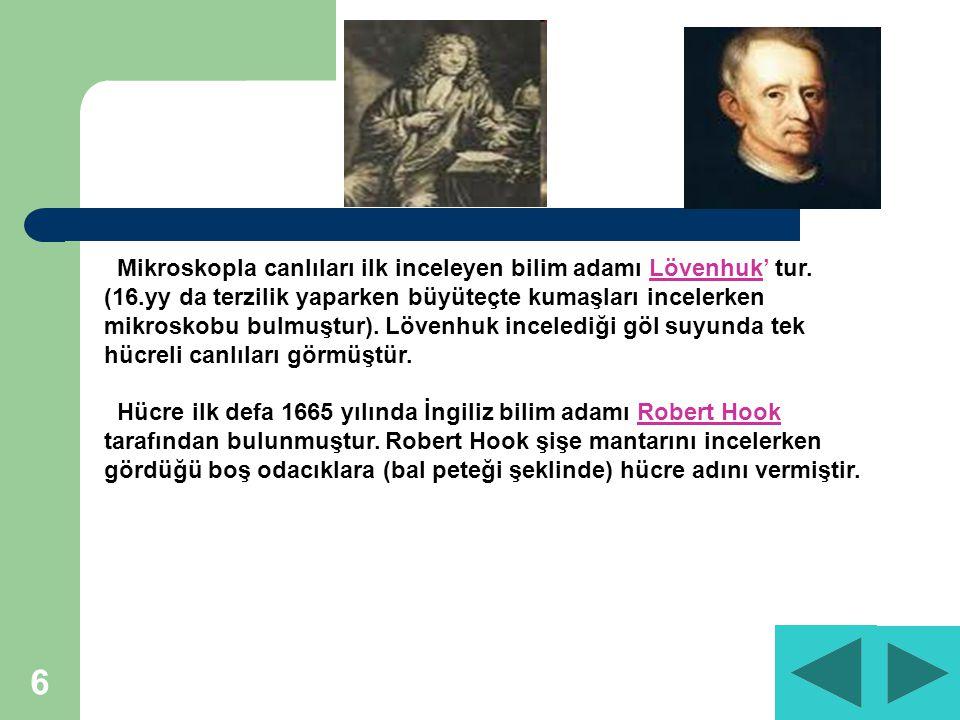 6 Mikroskopla canlıları ilk inceleyen bilim adamı Lövenhuk' tur.