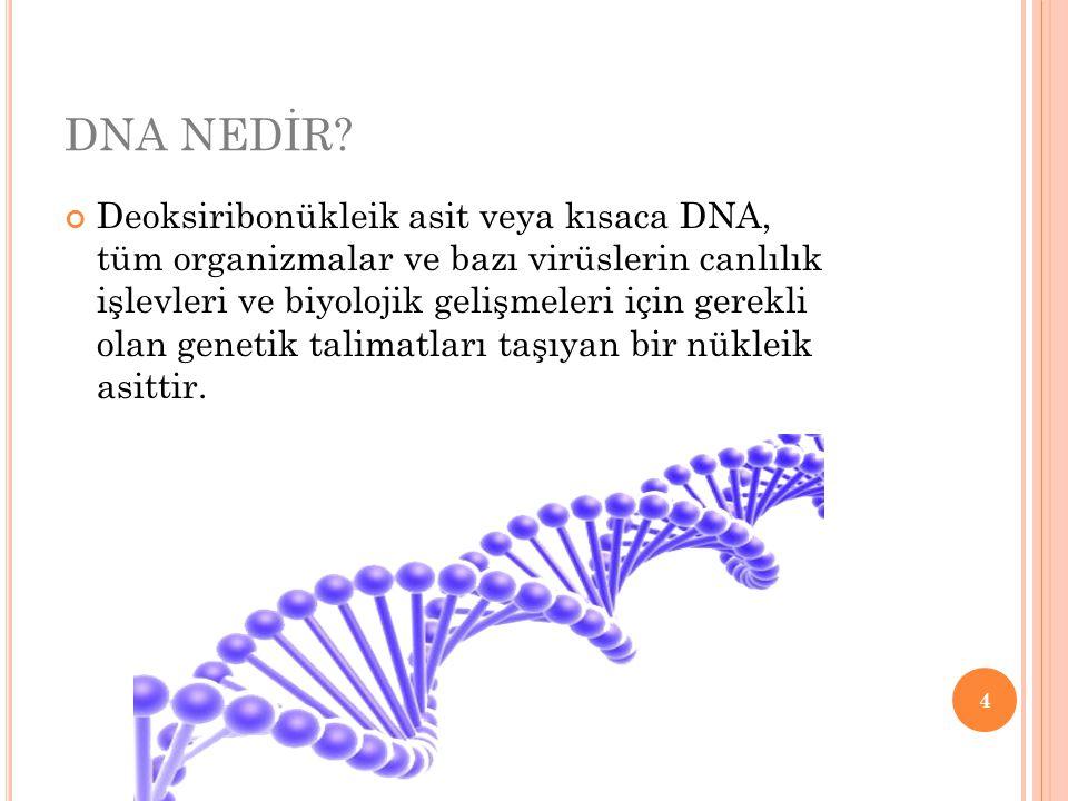 DNA NEDİR? Deoksiribonükleik asit veya kısaca DNA, tüm organizmalar ve bazı virüslerin canlılık işlevleri ve biyolojik gelişmeleri için gerekli olan g