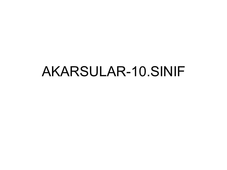 AKARSULAR-10.SINIF