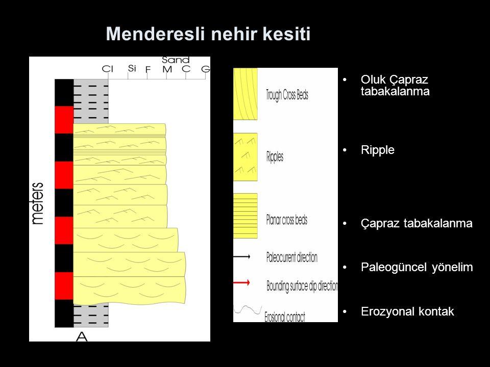 Menderesli nehir kesiti Oluk Çapraz tabakalanma Ripple Çapraz tabakalanma Paleogüncel yönelim Erozyonal kontak