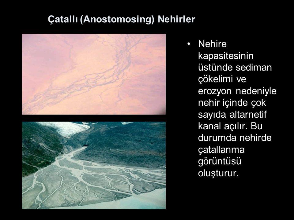 Çatallı (Anostomosing) Nehirler Nehire kapasitesinin üstünde sediman çökelimi ve erozyon nedeniyle nehir içinde çok sayıda altarnetif kanal açılır.