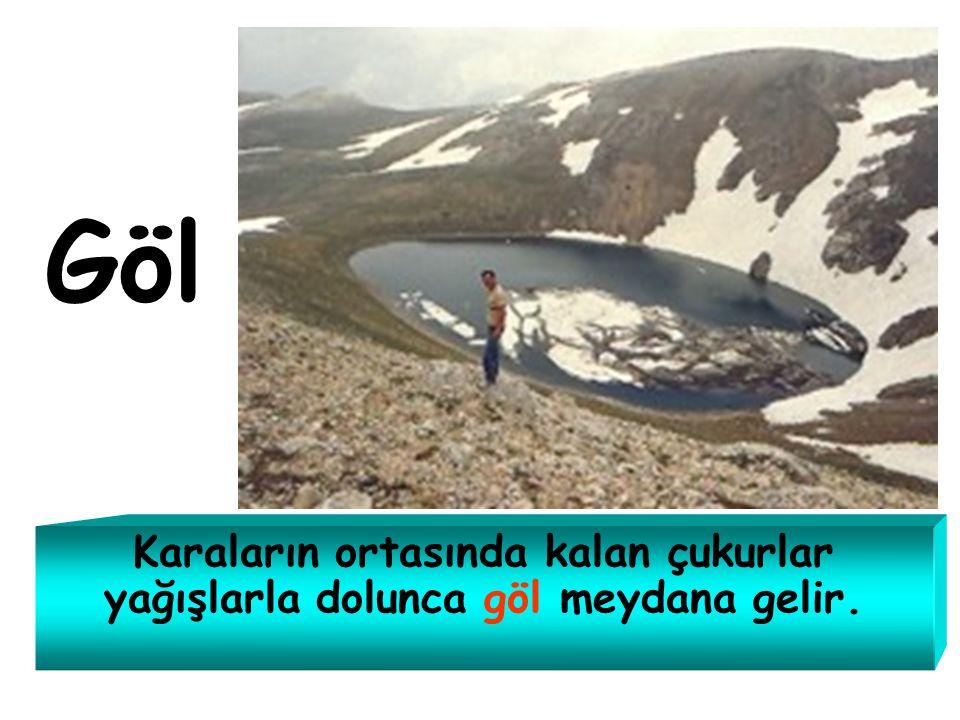 Türkiye'yi çevreleyen denizler hangileridir? Karadeniz Marmara Denizi Ege Denizi Akdeniz