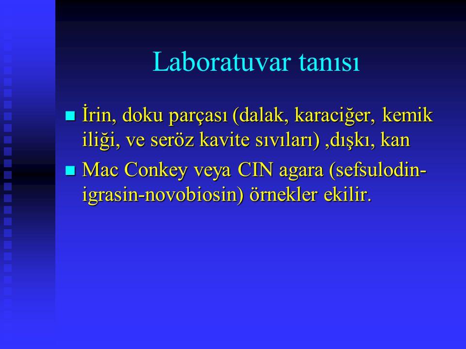 Laboratuvar tanısı İrin, doku parçası (dalak, karaciğer, kemik iliği, ve seröz kavite sıvıları),dışkı, kan İrin, doku parçası (dalak, karaciğer, kemik