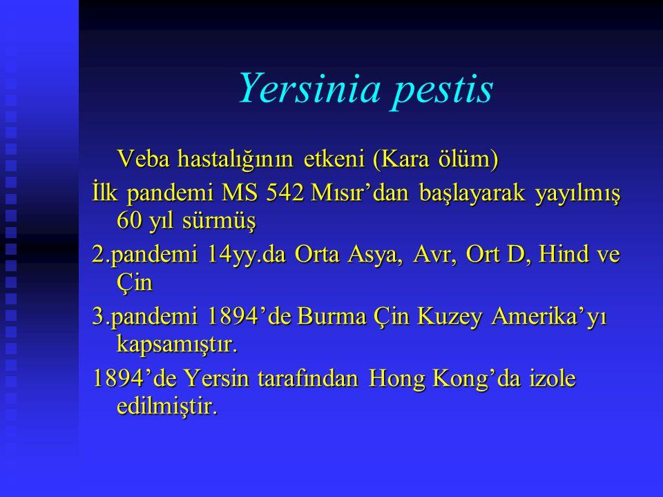 Yersinia pestis Veba hastalığının etkeni (Kara ölüm) İlk pandemi MS 542 Mısır'dan başlayarak yayılmış 60 yıl sürmüş 2.pandemi 14yy.da Orta Asya, Avr,