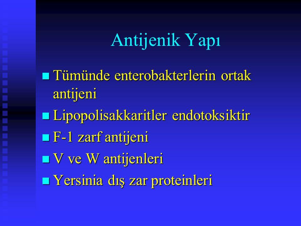 Antijenik Yapı Tümünde enterobakterlerin ortak antijeni Tümünde enterobakterlerin ortak antijeni Lipopolisakkaritler endotoksiktir Lipopolisakkaritler